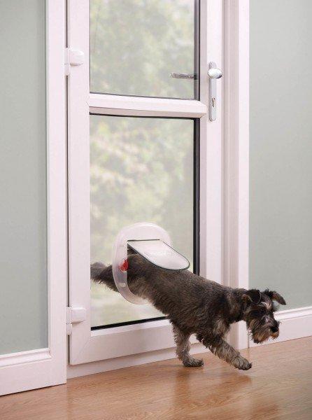 PetSafe Katzenklappe groß 4-Way 270 transparent