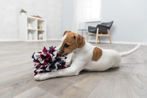TRIXIE Dog Activity Schnüffelball Ø15cm Hundespielzeug