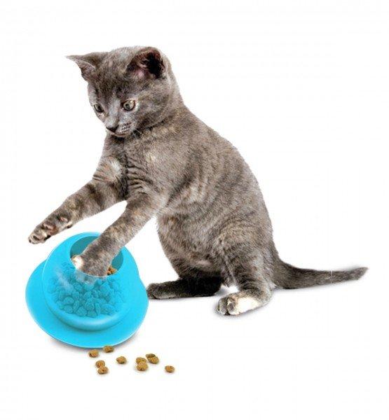 PetSafe Fishbowl zum Füttern Katzenspielzeug