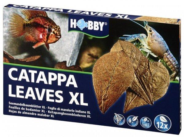 HOBBY Catappa Leaves XL Seemandelbaumblätter (12 Stück)