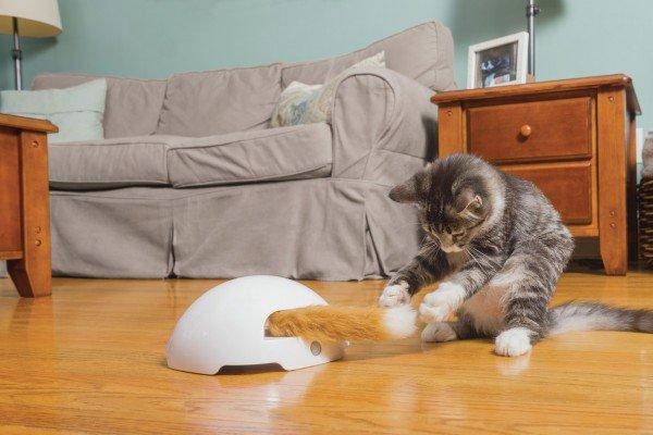 FroliCat Fuchsbau Katzenspielzeug
