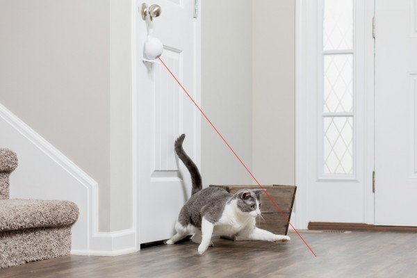 PetSafe Dancing Dot Laser Katzenspielzeug