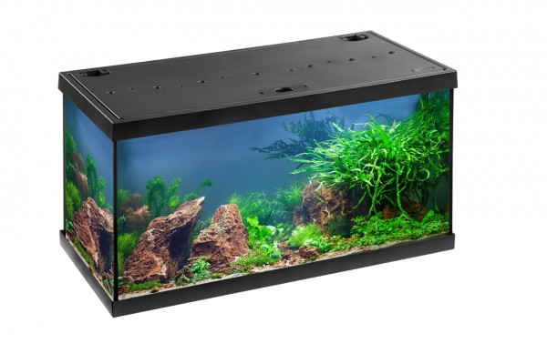 EHEIM aquastar 54 LED Aquarium-Set