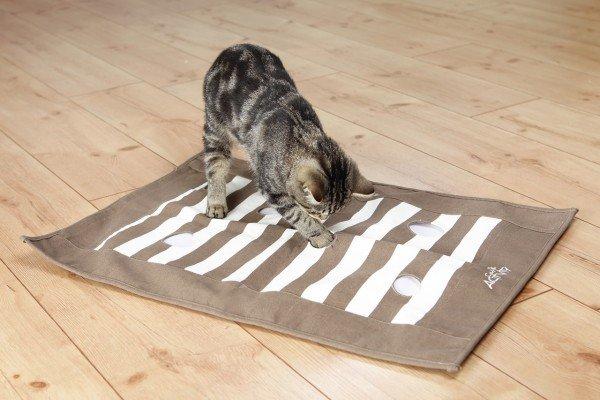 Cat Activity Pföteldecke Strategiespiel 70x50cm braun/creme