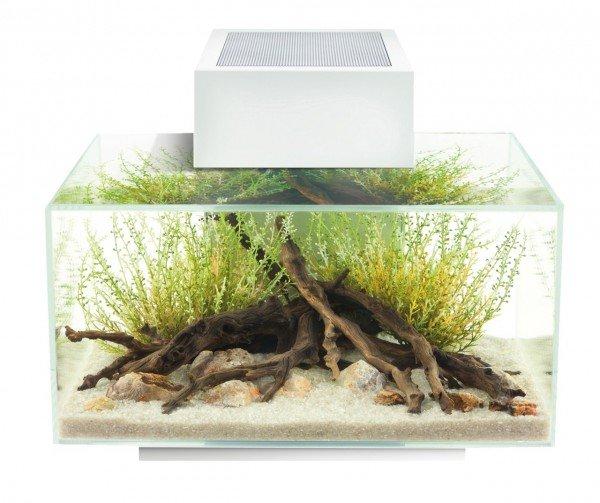 FLUVAL Edge I 23 Liter Aquarium weiß