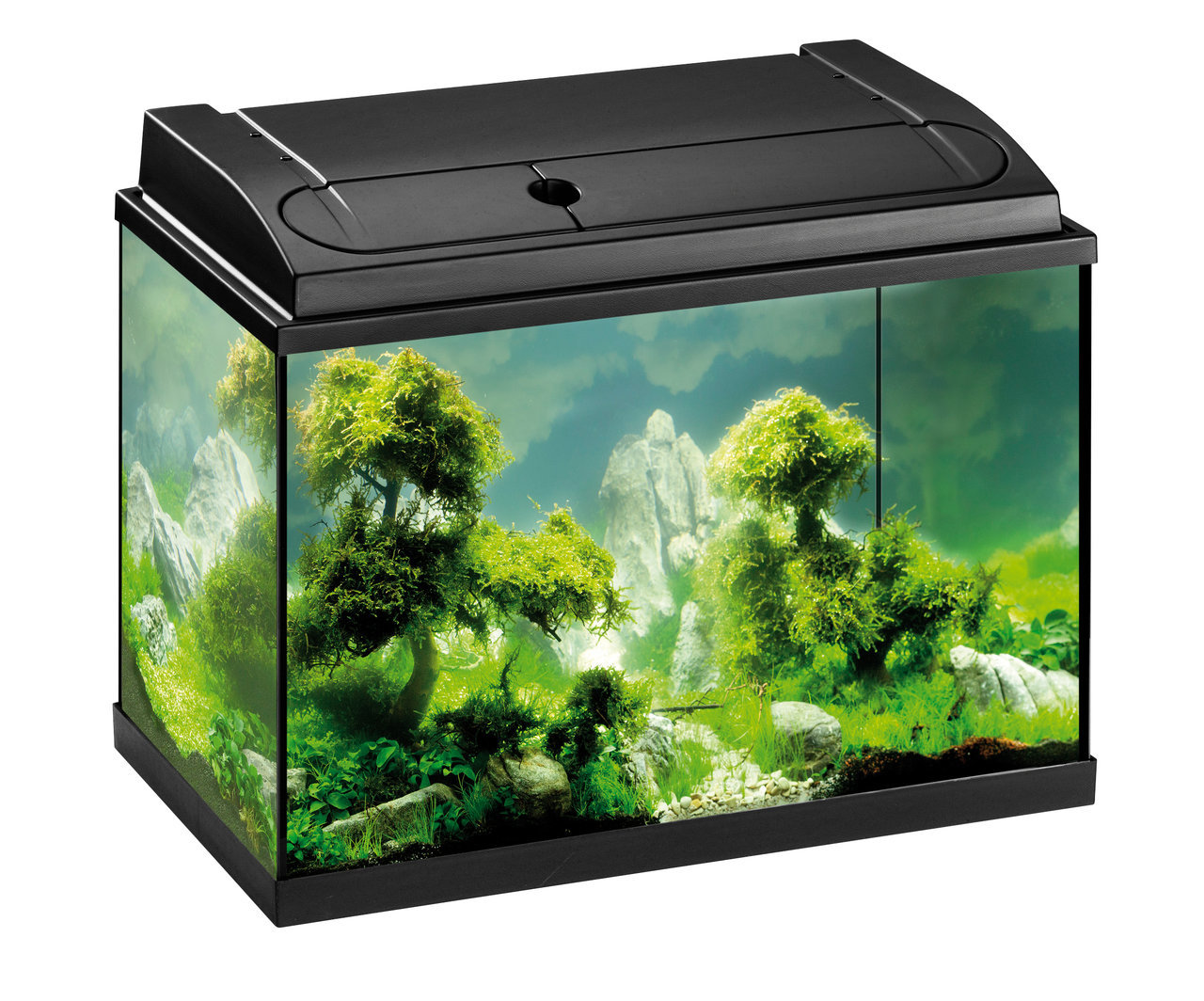 eheim aquapro 84 schwarz aquarium set zoologo. Black Bedroom Furniture Sets. Home Design Ideas