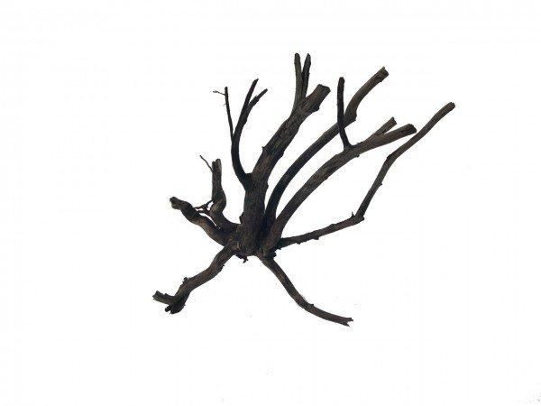 amtra Moorwood Naturholz