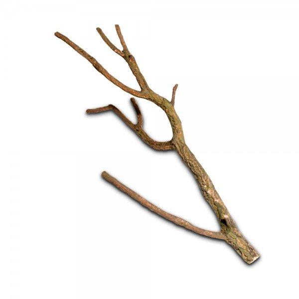 HOBBY Kork Troncho L 75 - 100 cm Naturholz