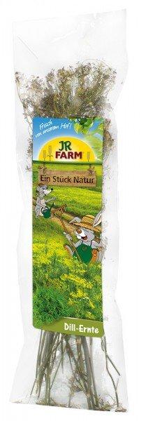 JR FARM Ein Stück Natur Dill-Ernte 80g Kleintierfutter