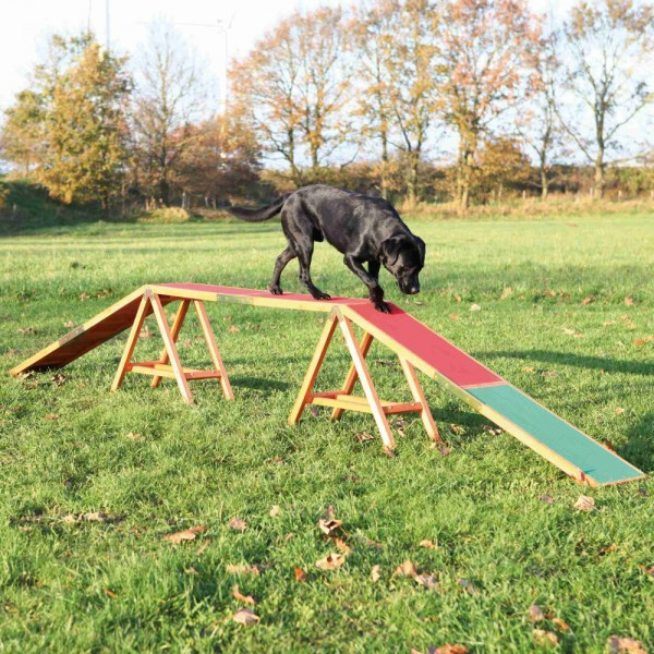 TRIXIE Dog Activity Agility Steg 456x30x64cm