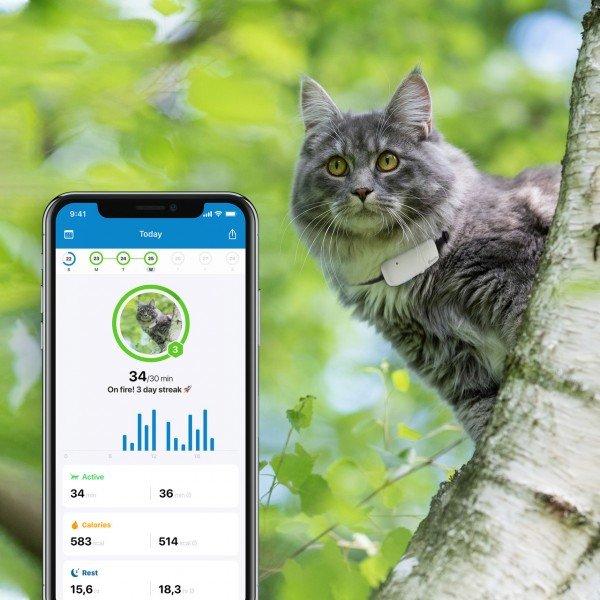 Tractive GPS-Tracker für Katzen