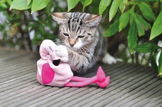 Aumüller Flamingo Pinky Baldrian-/ Dinkelkatzenspielkissen