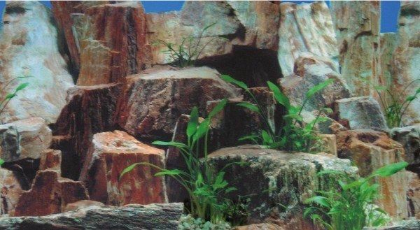 HOBBY Fotorückwand Steine 1/2 100 x 50 cm