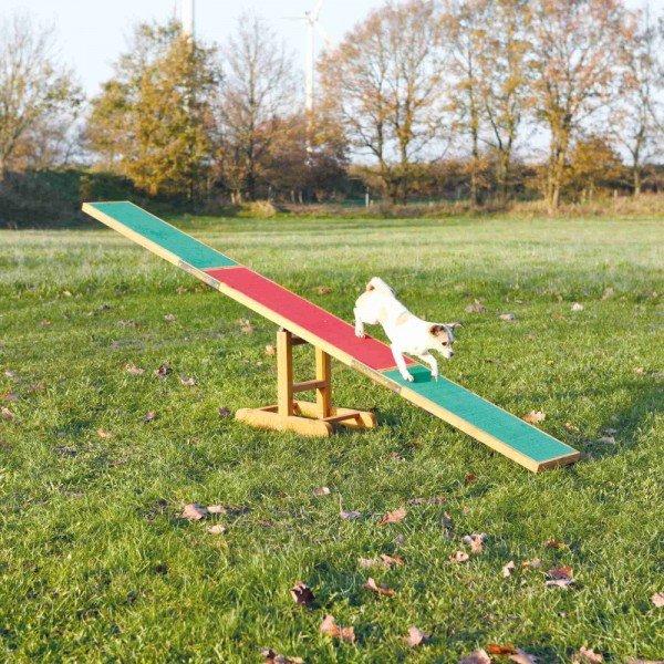 TRIXIE Dog Activity Agility Wippe 300x34x54cm