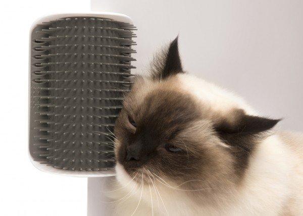 catit Senses 2.0 Self Groomer Massage-Ecke Katzenspielzeug